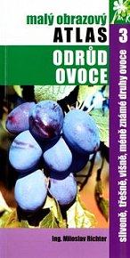 Slivoně, třešně, višně, méně známe druhy ovoce