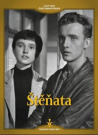 Štěňata - DVD (digipack)