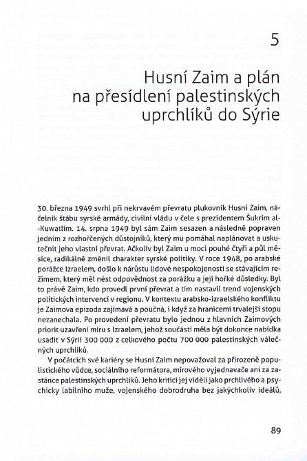 Náhled Izrael a Palestina: přehodnocení, revize, vyvracení