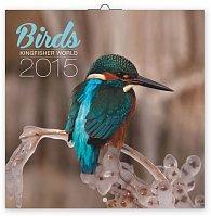 Kalendář 2015 - Ledňáčci - nástěnný (GB, DE, FR, IT, ES, NL)