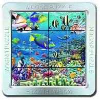 16 d. 3D Magnetické puzzle Korálový útes