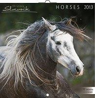 Kalendář 2013 poznámkový - Koně Christiane Slawik, 30 x 60 cm