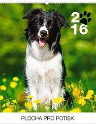 Psi Praktik - nástěnný kalendář 2016