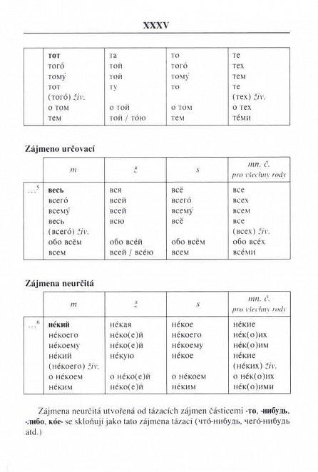 Náhled Rusko-český a česko-ruský praktický slovník