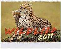 Wildlife 2011 - nástěnný kalendář