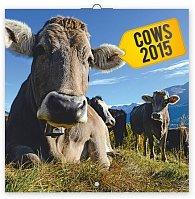 Kalendář 2015 - Krávy - nástěnný (GB, DE, FR, IT, ES, NL)