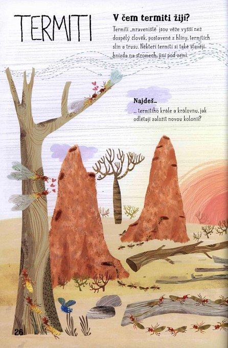 Náhled Velká kniha drobné havěti - Brouci, mouchy, žížaly a jiné potvůrky