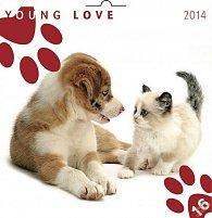 Kalendář 2014 - Young Love Koťata & Štěňata - nástěnný poznámkový (ANG, NĚM, FRA, ITA, ŠPA, HOL)