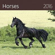 Kalendář nástěnný 2016 - Horses 300x300