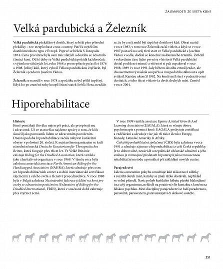 Náhled Velká encyklopedie koní