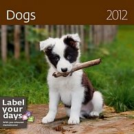 Kalendář nástěnný 2012 - Psi