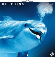 Kalendář 2013 poznámkový - Delfíni, 30 x 60 cm
