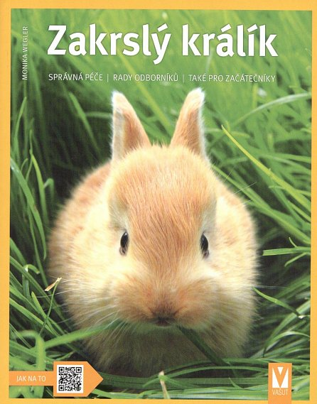 Náhled Zakrslý králík - Jak na to
