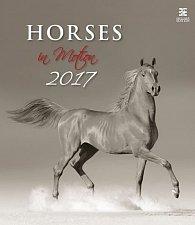 Kalendář nástěnný 2017 - Horses in Motion/Exclusive