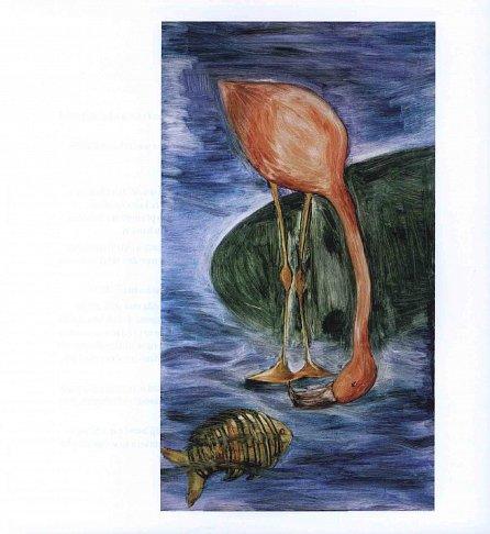 Náhled Velbloud a Ibis