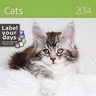 Kalendář 2014 - Cats - nástěnný 300x300