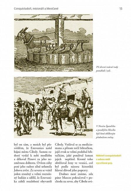 Náhled Divoký západ: Průkopnická doba Ameriky