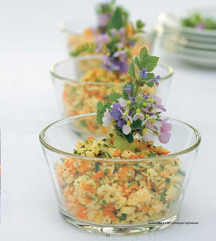 Náhled Divoké rostliny - Lahodné recepty, jedlé dekorace a nápady na dárky