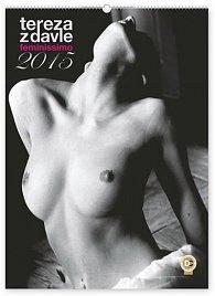 Kalendář 2015 - Feminissimo Tereza z Davle - nástěnný s prodlouženými zády