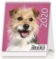 Kalendář stolní 2020 - Mini Puppies