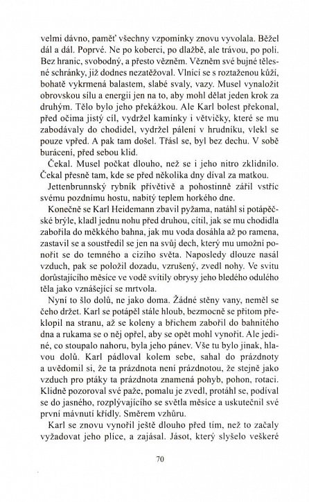 Náhled Tichý - Kronika vraha