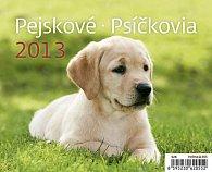 Kalendář stolní 2013 MiniMax - Pejskové