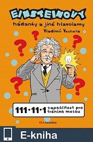 Einsteinovy hádanky (E-KNIHA)