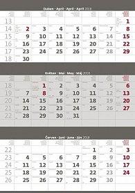 Kalendář nástěnný 2018 - 3měsíční/šedý s jmenným kalendáriem