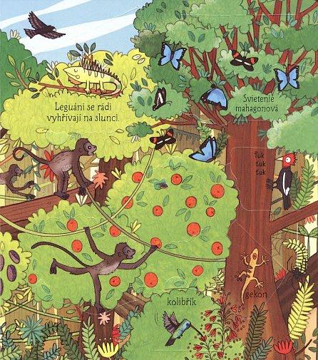 Náhled Džungle - Podívej se pod obrázek