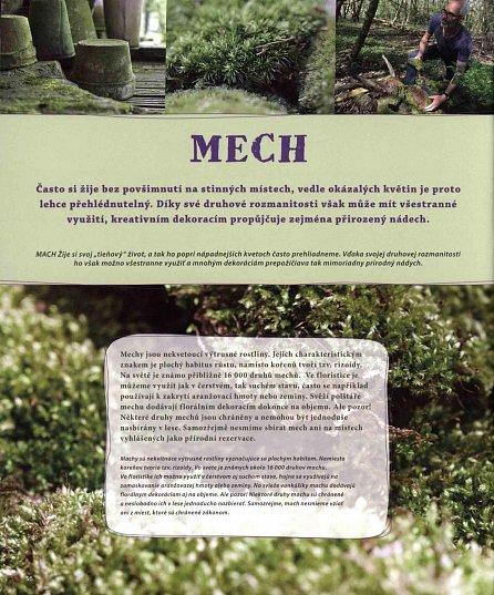 Náhled Natur Floristika - Aranžování z přírodních materiálů