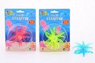 Svítící chobotnička