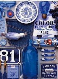 Kalendář 2013 nástěnný - Color Fascination Guido Cecere, 48 x 64 cm