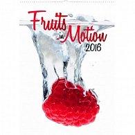 Kalendář nástěnný 2016 - Ovoce v pohybu,  33 x 46 cm