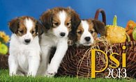 Psi - stolní kalendář 2013