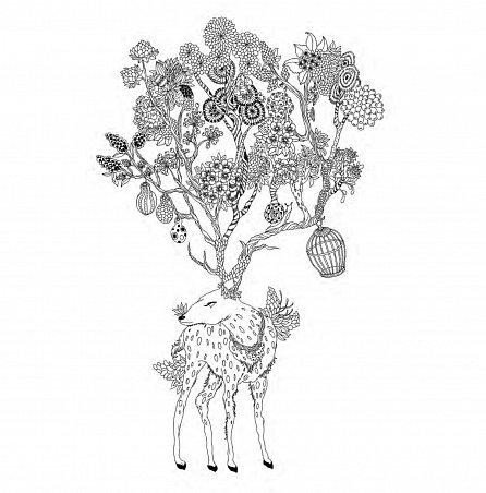 Náhled Země snů - Kouzelné omalovánky pro dospělé