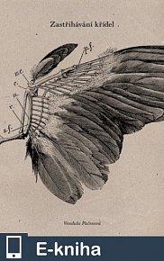 Zastřihávání křídel (E-KNIHA)