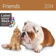 Kalendář 2014 - Friends - nástěnný