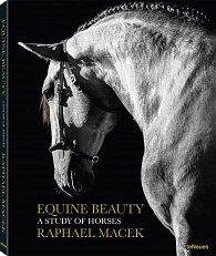 Equine Beauty - A Study of Horses (Small Format Edition)