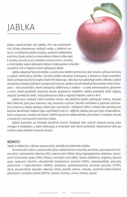 3aae6787f5a Kniha Mystický léčitel - Léčivá síla ovoce a zeleniny - William ...