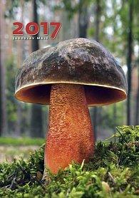 Kalendář nástěnný 2017 - Houby