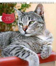 Kalendář nástěnný 2018 - Kočky
