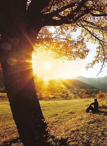 Náhled Síla srdce - Najděte skutečný smysl života