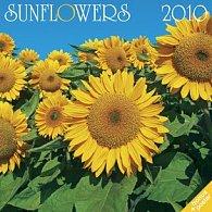 Slunečnice 2010 - nástěnný kalendář