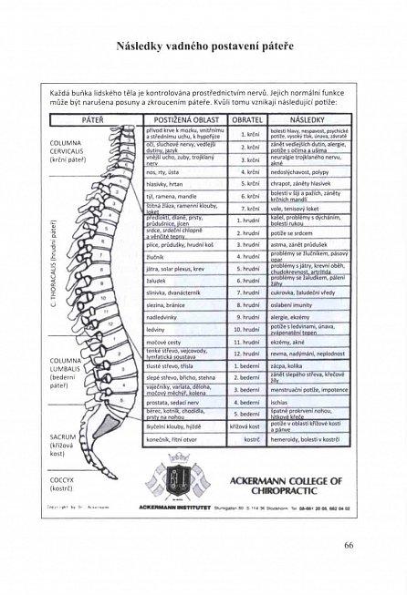 Náhled Jde o vaše kosti - Bolesti zad a kloubů, osteoporóza