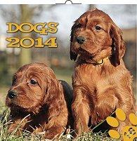 Kalendář 2014 - Psi - nástěnný poznámkový (ANG, NĚM, FRA, ITA, ŠPA, HOL)