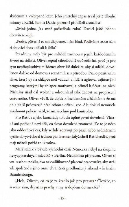 Náhled Arabboy - Jak se žije arabským chlapcům v Evropě aneb Krátký život Rašída A.