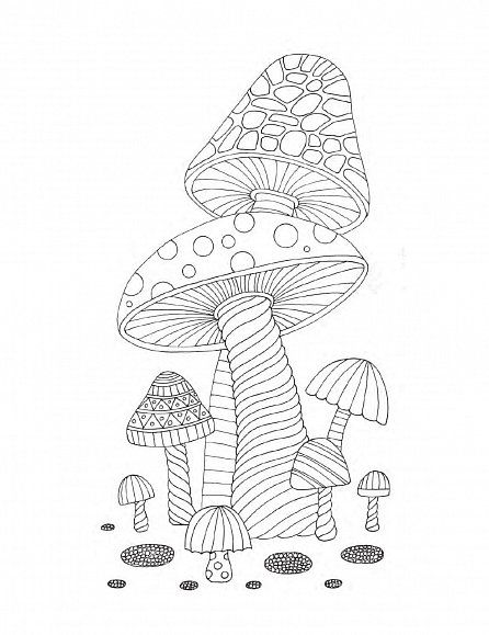 Náhled Arteterapie - Duše lesa