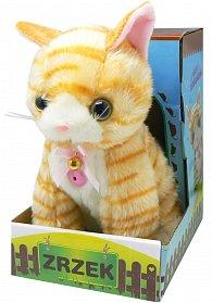 Koťátko Zrzek