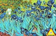 1000 d. Van Gogh, Kostace
