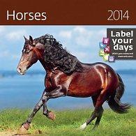 Kalendář 2014 - Horses - nástěnný